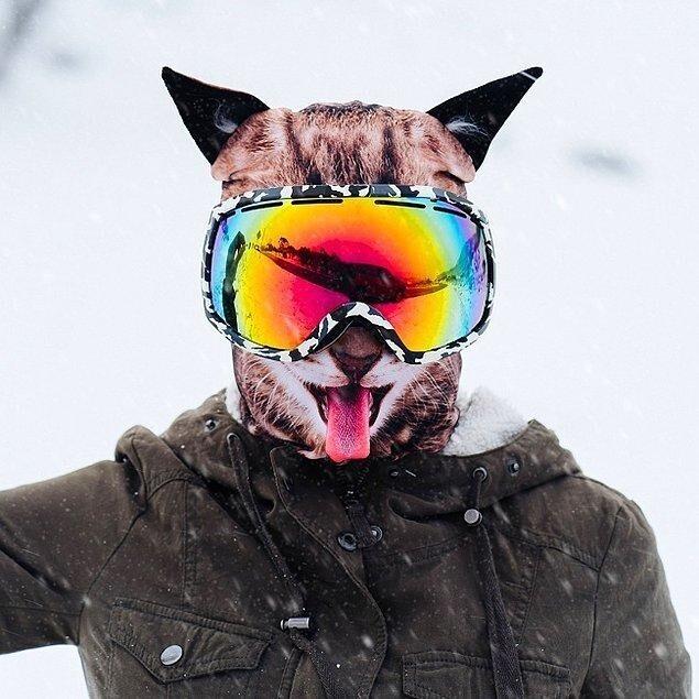 Лыжная маска в виде котика