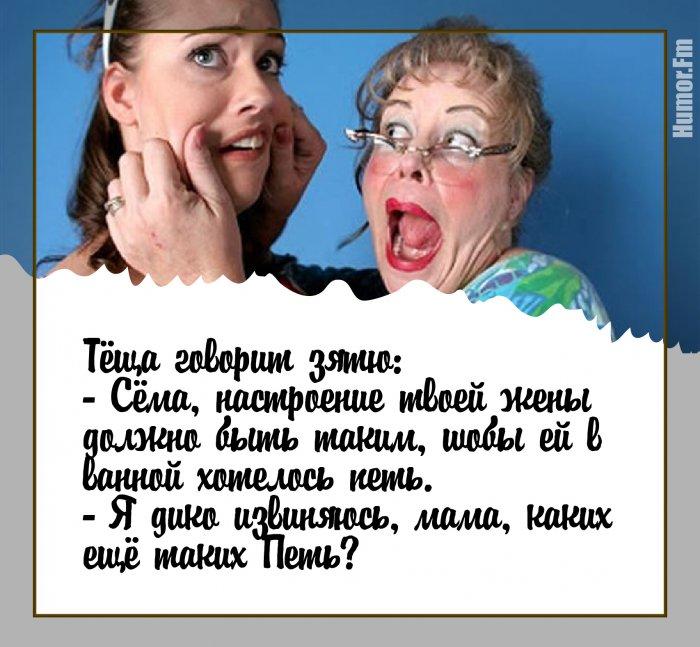 Что может быть лучше анекдотов про тещу?!