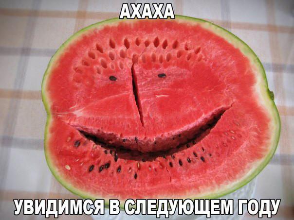 Подборка веселых картинок  для хорошего настроения!