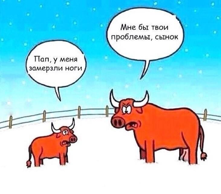 Камасутра анимашки  Клуб Нимфоманок