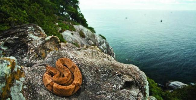 5 опасных и запрещенных мест для туристов