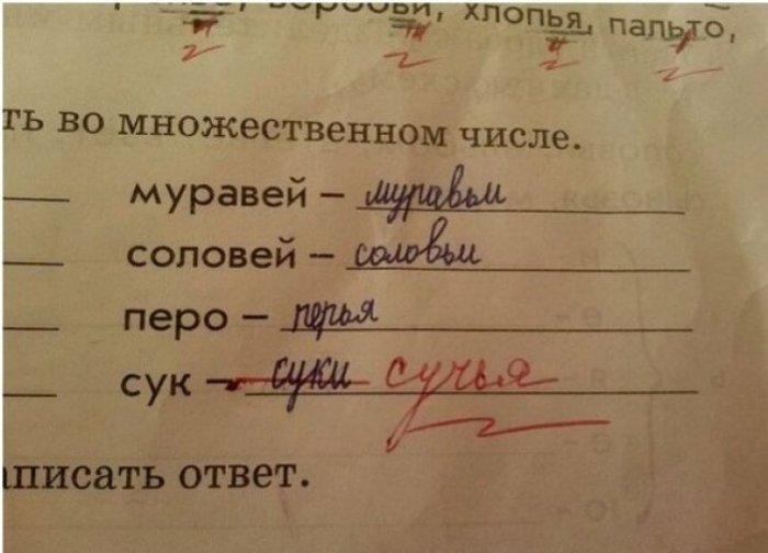 Самые находчивые ученики в мире (сделано в России)