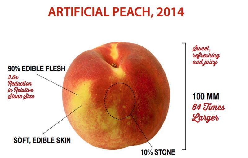 А знали ли вы как выглядили дикие овощи и фрукты до селекции