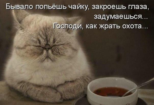 humor.fm