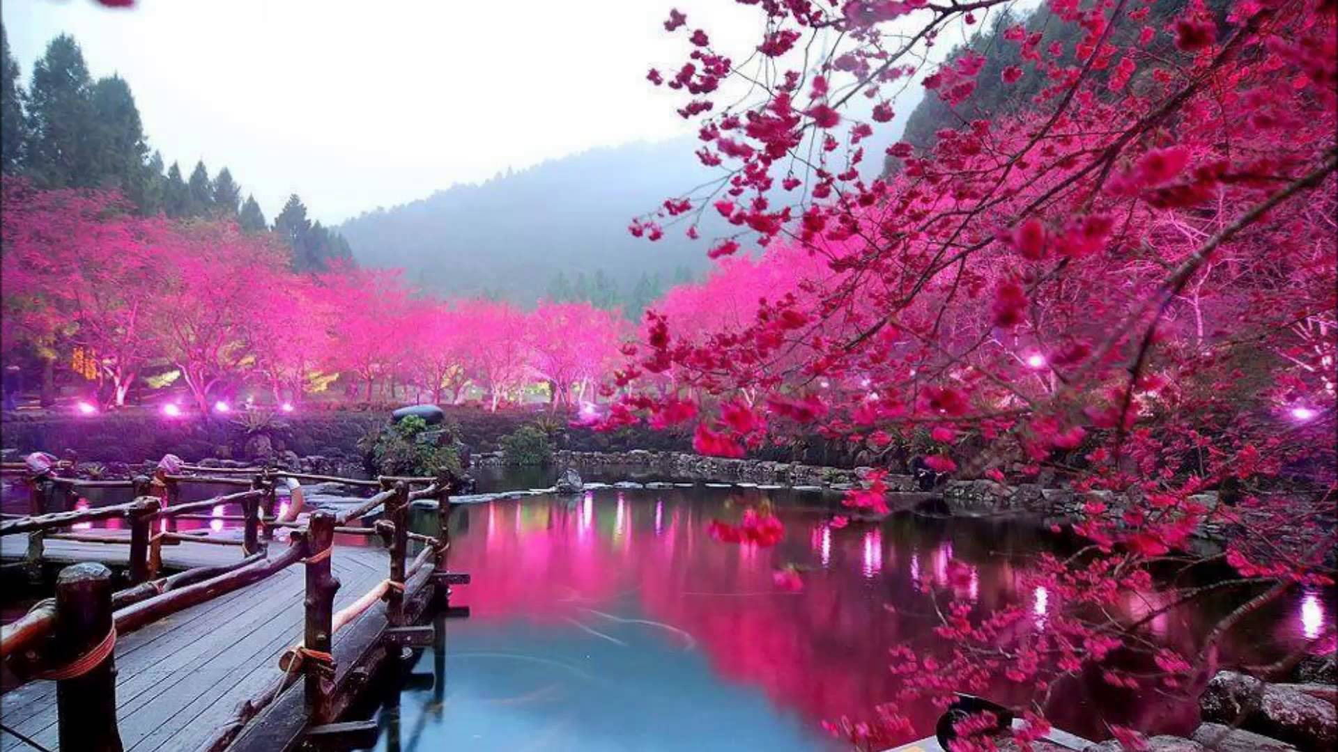 картинки красивые фото осень