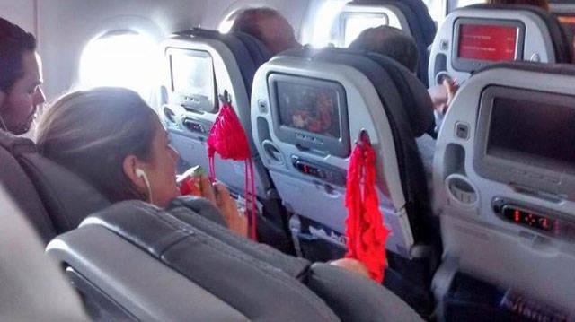 16 несносных попутчиков в самолете! Желаем приятного полета!