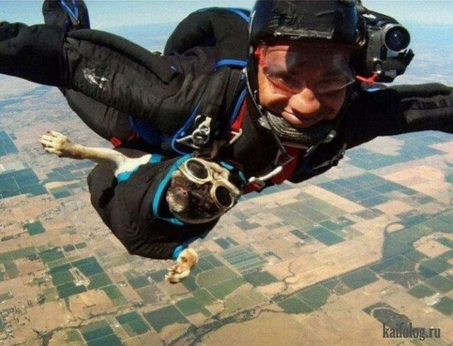 Вдохновляющие, смешные и шокирующие фото парашютистов!