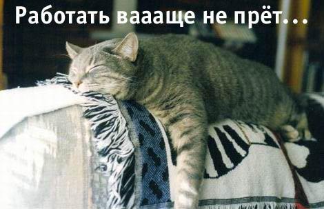 Понедельник - день тяжелый!