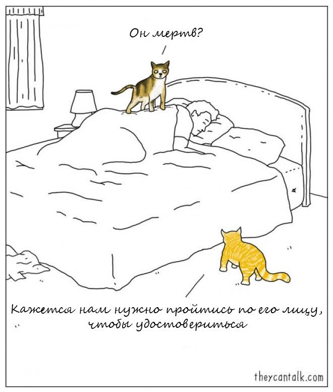 Если бы животные могли говорить