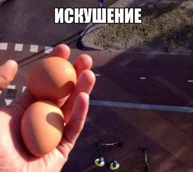 Все яйца в одном посте!