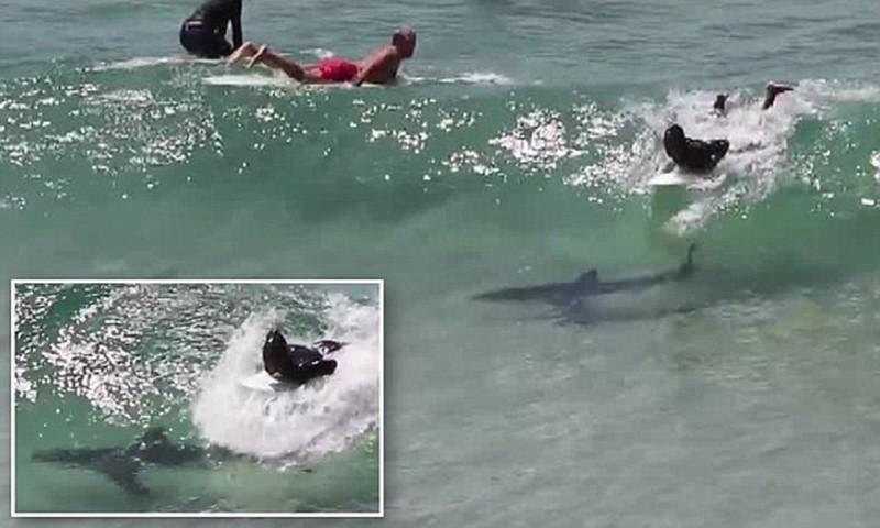 Опасный серф на пляжах Австралии!