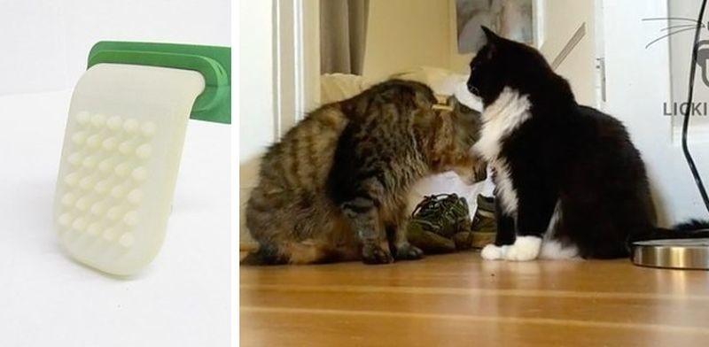 Ну, совсем с ума сошли... Теперь свою кошку можно лизать!