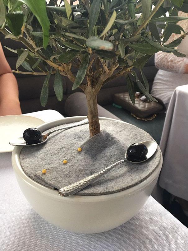 Современные кафе вышли на новый уровень креативности