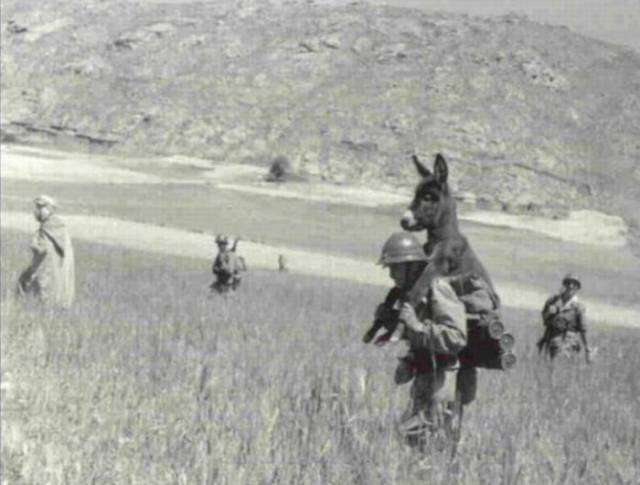 Армейская жизнь суровая и не без казусов