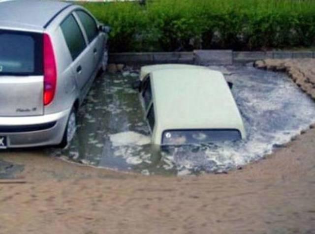 Некоторым лучше просто держаться от машин подальше