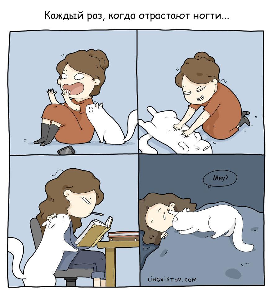 18 комиксов о нелегкой жизни с кошкой