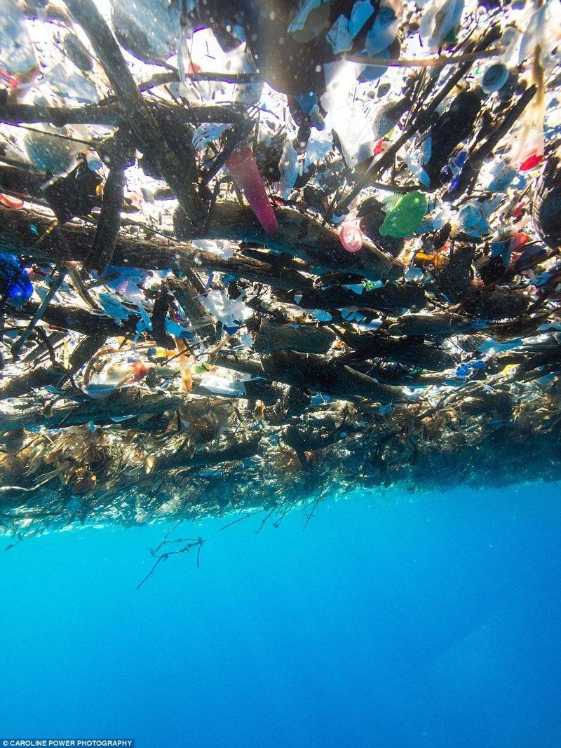 """""""Остров"""" из пластиковых отходов в Карибском море"""