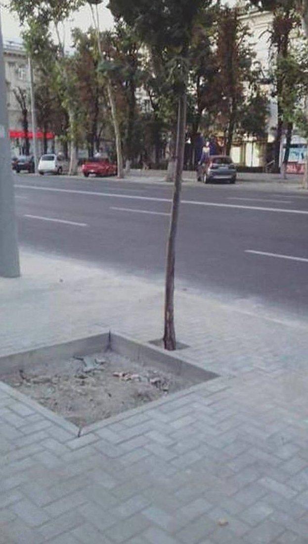 Горе - строители