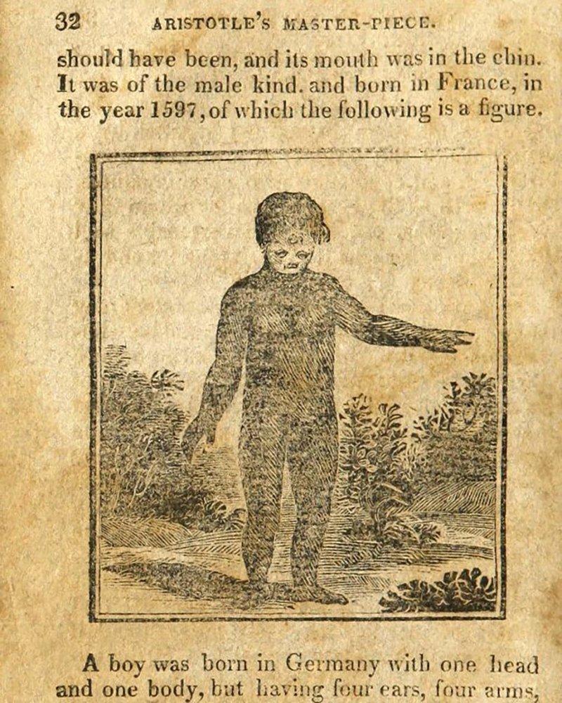 Книга о сексе ветка персика