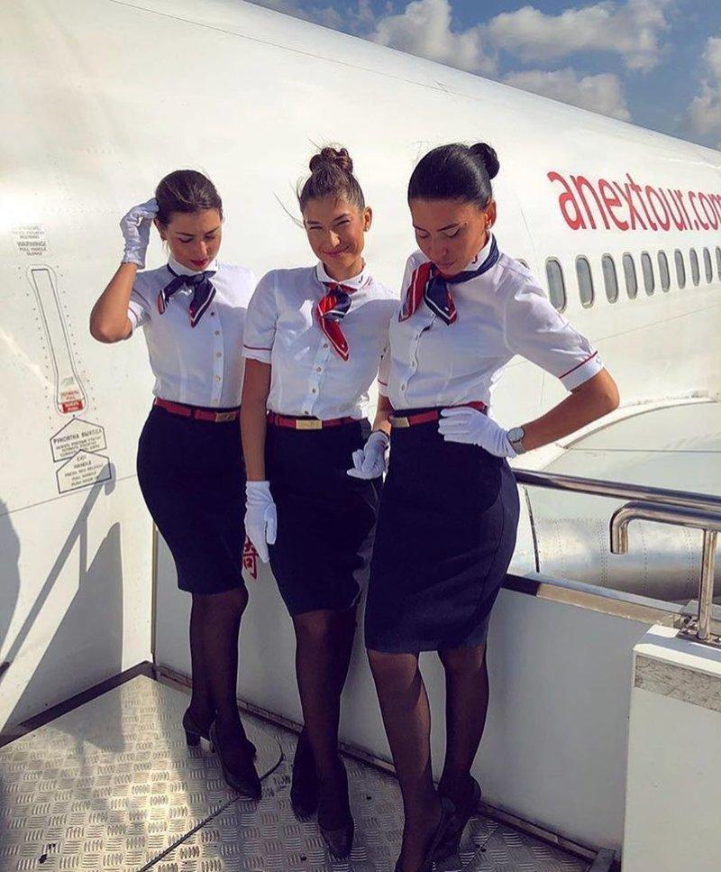 Сексуальные стюардесс