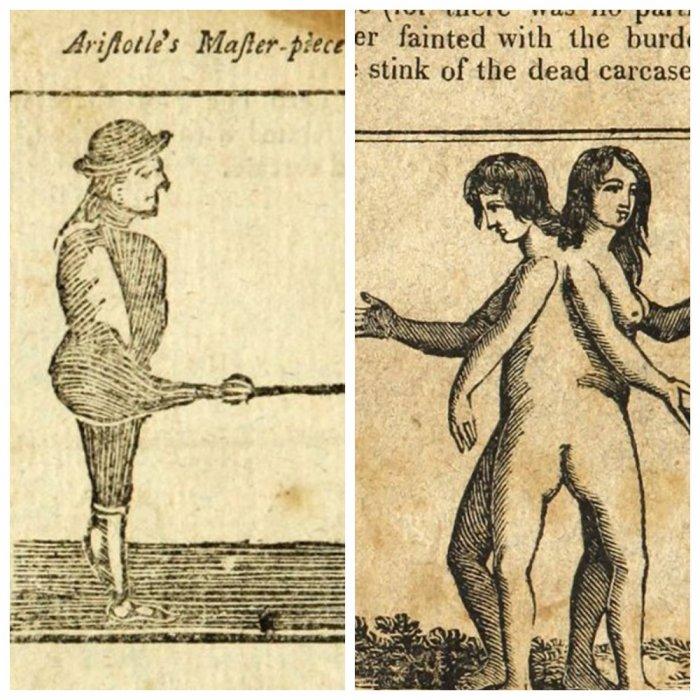 Пугающее руководство по сексу XVII века