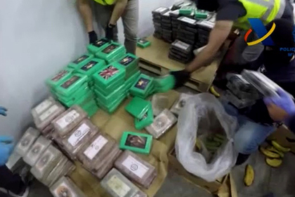 Испанские полицейские нашли 9 тонн кокаина в бананах