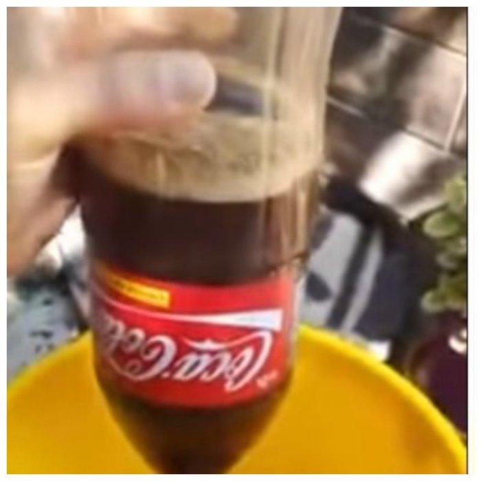Аргентинец нашел в бутылке Coca-Cola неаппетитный бонус