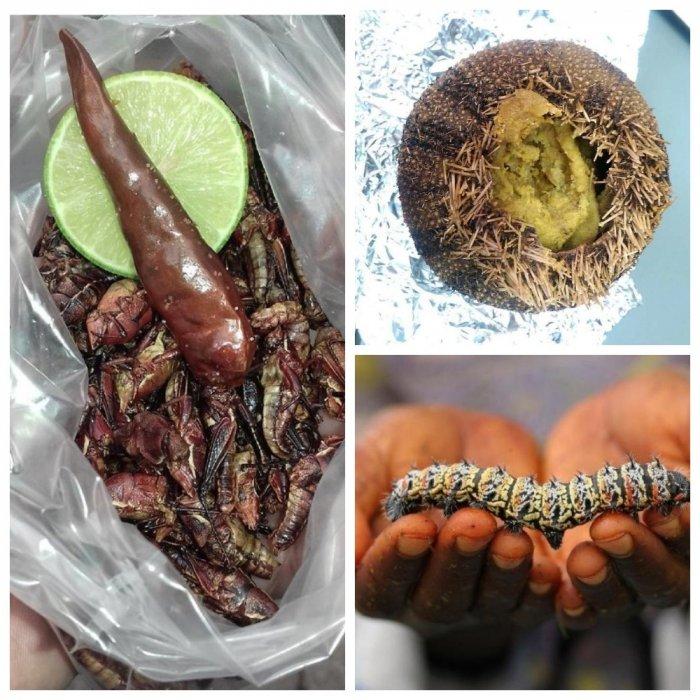 Карательная кулинария: национальные деликатесы, которые рискнет попробовать не каждый гурман
