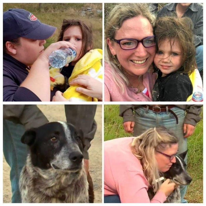 В Австралии слепой и глухой пес почти сутки охранял пропавшую малышку